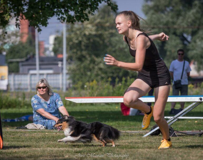 pic Marta Miil Aktiivse koera laager