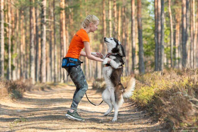 pic Aktiivse koera suvelaager