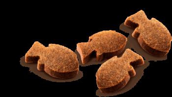 pic Carnilove koeramaius karpkala ja tüümianiga1