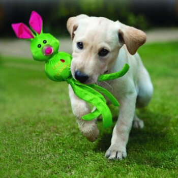 pic kong wubba ballistic friend mänguasi koertele, roheline