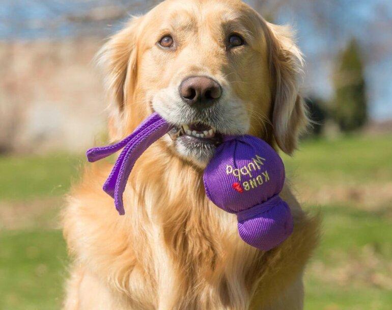 pic kong wubba mänguasi koertele, lilla