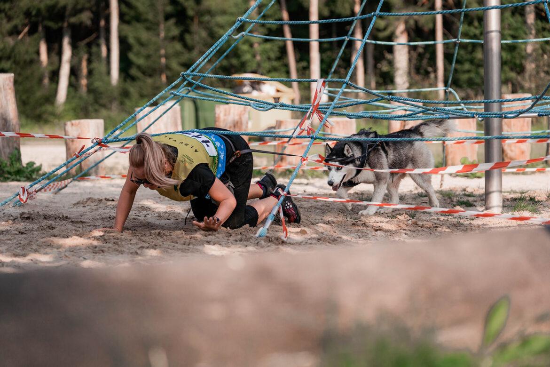 pic Takistus rada koertega